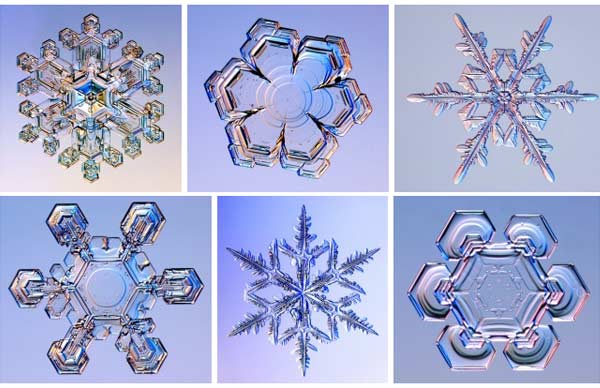 web design spec doc snowflake effect