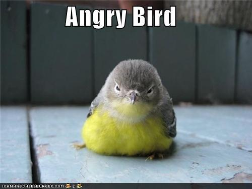 He is angry that Rovio (maker of angry birds) did not include him in ...