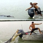 crocodile-attack