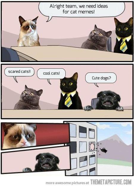 funny-grumpy-cat-scared-dog-comic